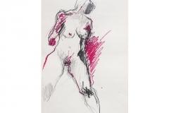 W_0044_Bleistift_Oelpastell_44x60cm